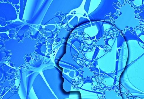 memoria y la actividad motriz